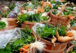 Beautiful CSA baskets for delivery Carts and Tools