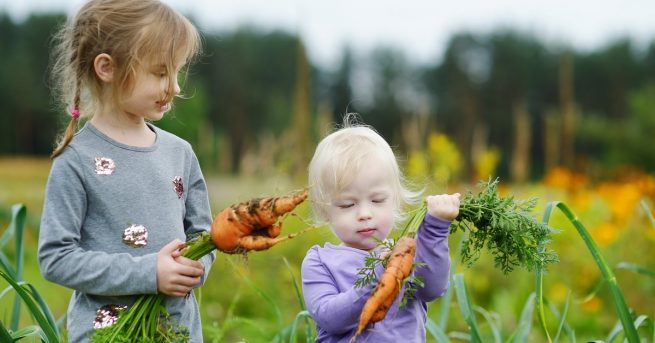 Children holding carrots just pulled from the ground
