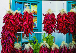 A vibrant picture of hanging Chiles