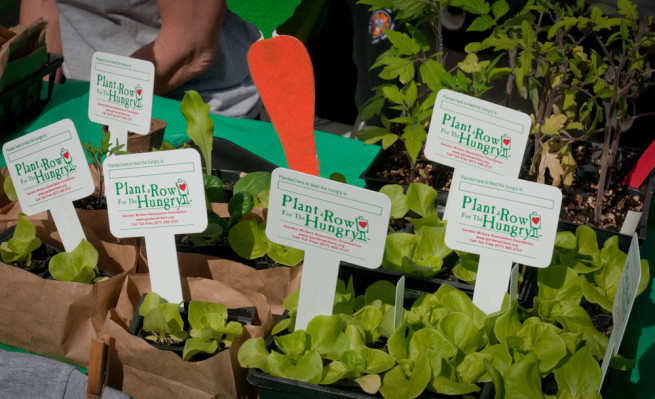 Plant a Row for the Hungry Plants