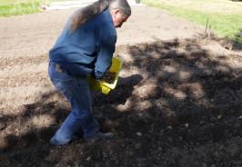 Planting_Potatoes_Carts_and_Tools