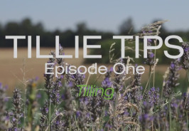 Tillie Tips Episode One Carts and Tools