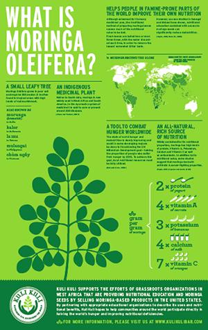 moringa_infographic